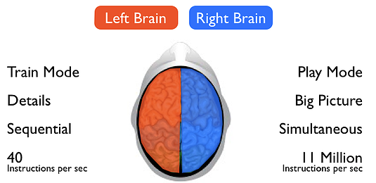 leftrightbrain